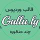 قالب وردپرس چند منظوره و دیجیتال مارکتینک گالیو – Gullu - مارکت ایرانی تمی